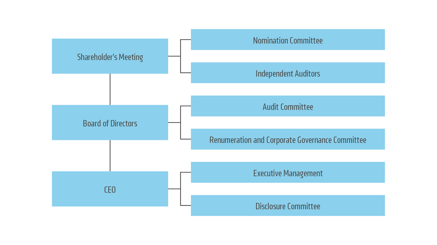 what is corporate governance pdf