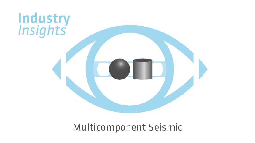 Industry Insight on Marine Multicomponent Seismic