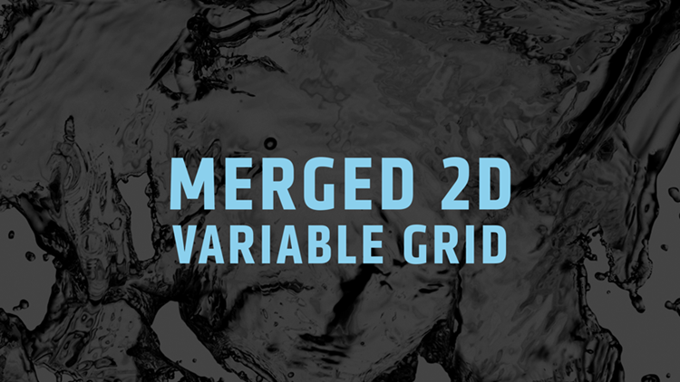 Merged Variable Grid 2D
