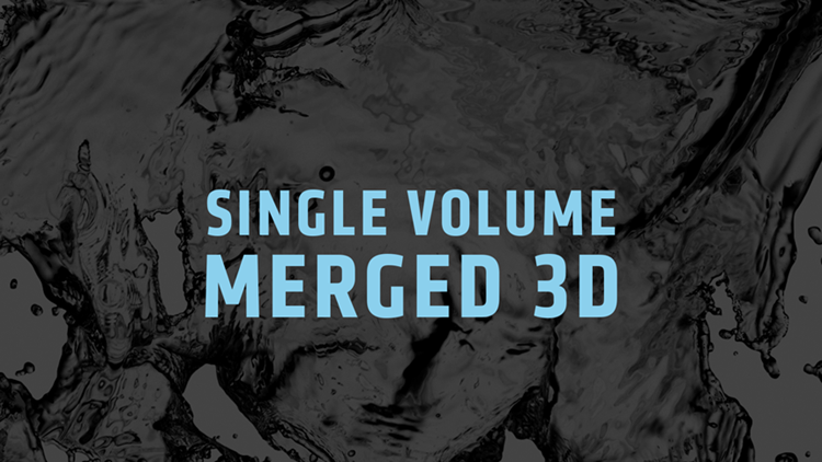 Single Volume Merged 3D
